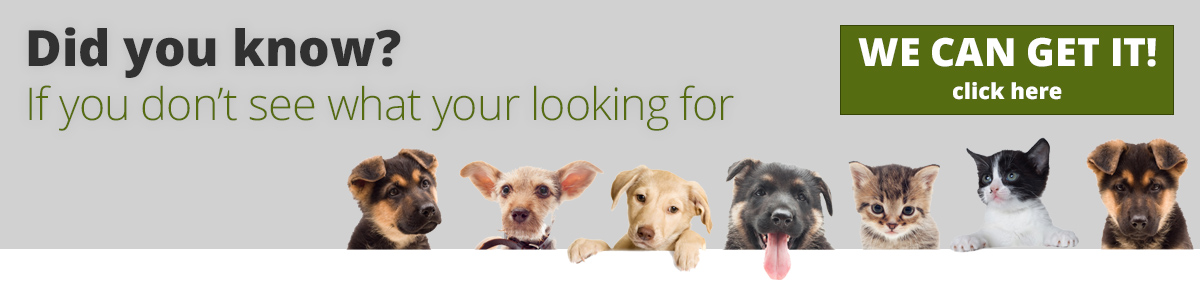 Dogs and Puppies for Sale - Visit Petland Rome in Floyd